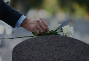 placement of white rose on grave
